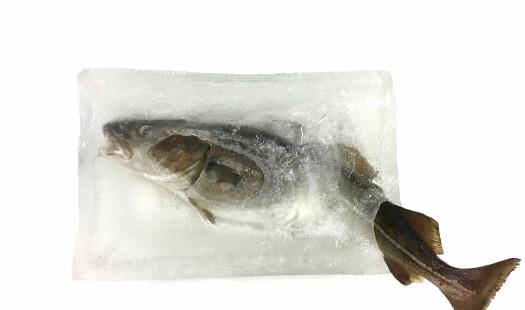 Frossenfisk: Fra fremtidsmat til dårlig rykte – og tilbake igjen?