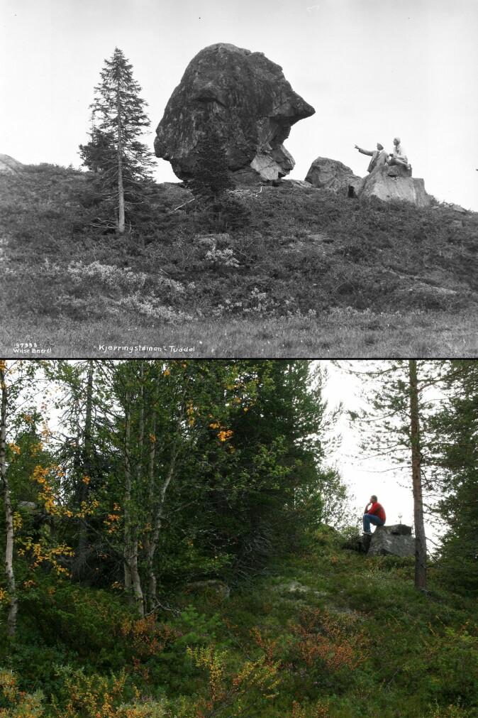 Da utmarksbruken opphørte ble Kjerringsteinen i Tuddal gradvis gjemt og glemt ettersom kratt og trær vokste til. Øverst et bilde fra 1931. Nederst et bilde fra 2008. (Foto: Anders Beer Wilse, Norsk Folkemuseum og Oskar Puschmann, Skog og landskap, lastet ned fra Tilbakeblikk.no, CC BY-NC-ND 3.0)
