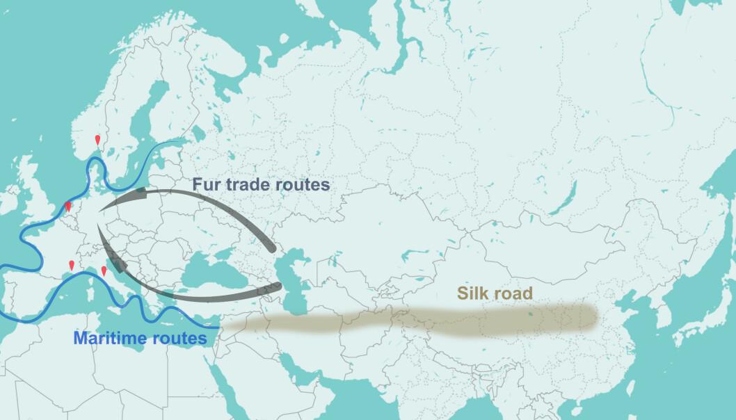 Dyrepelser fra Sentral-Asia og de østligste delene av Europa ble fraktet vestover langs to ruter under middelalderen. Den sørlige ruten ble støttet av Den gylne horde, mens den nordlige ruten ble dominert av Hansaforbundet. (Illustrasjon: Av Amine Namouchi)