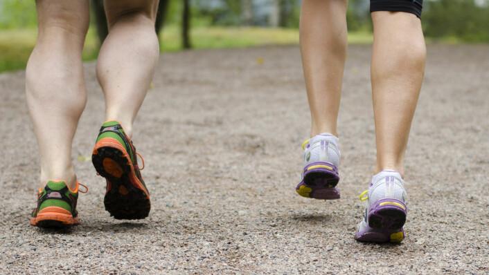 Bygg deg opp en solid muskelhukommelse før sommeren. Foto: NIH
