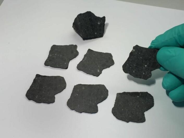 De danske forskerne har fått fatt på i alt 44 gram av Black Beauty. Av dette har 22 gram blitt skåret opp i tynne skiver som skal brukes i ulike forskningsprosjekter. De siste 22 grammene er fortsatt i en samlet «klump». (Foto: (Foto lånt ut av Martin Bizzarro))