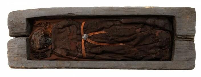 CT-skanningene avslørte også at Skrydstrup-kvinnen er svært godt bevart, noe som ofte er tilfellet for bronsealderens eikekistegraver. (Foto: Nationalmuseet)