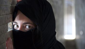 Jihadister har fått større fotfeste i Sverige, men forskerne vet lite om dem