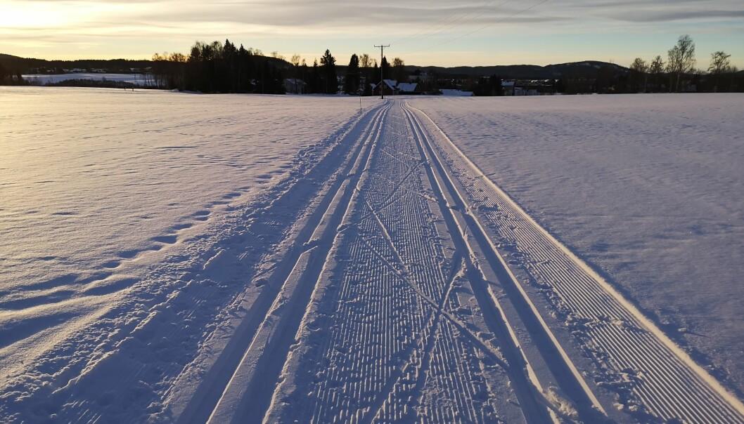 Det må tilrettelegges bedre for skøyting for vanlige folk i Norge. I dette tilfellet burde løypekjøreren ha kjørt traséen en meter bredere, slik at både klassisk og skøyting var mulig. Det mener bloggforfatter Thomas Losnegard. (Foto: NIH)