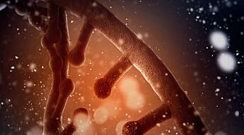 Bruker big data for å forstå immunforsvaret bedre