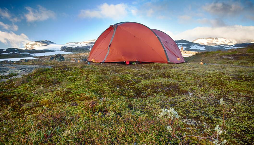 Med bidrag fra et 50 talls forskere fra inn- og utland og et budsjett på over 90 millioner kroner er Opplevelser i nord det største reiselivsforskningsprosjektet som er igangsatt i Norge per i dag og antakelig også et av de største på verdensbasis. (Foto: Shutterstock / NTB scanpix)