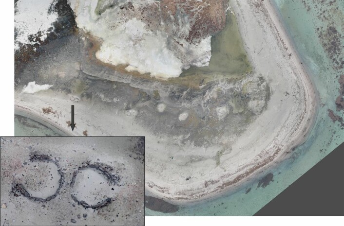 Smeerenburg, hvalfangststasjon fra 1600-tallet. På dette neset har det vært 19 bygninger og 8 solide spekkovner. I dag er det sporene etter spekkovnene som er mest synlig. Bildene har høy oppløsning som muliggjør overvåking av endringer på et svært detaljert nivå. (Foto: (Dronefoto 2014 ©Norut))