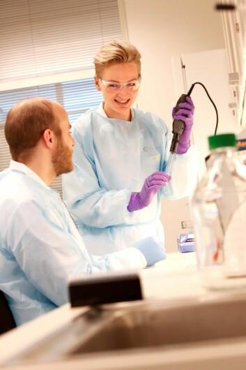 Stipendiat Tuva Høst Brunsell studerer genetiske avvik i levermetastaser fra tarmkreft og post doc Andreas Hoff vil undersøke om han gjenfinner genmateriale fra tumor i blodprøver fra pasienten, med mål om å utvikle bedre monitoreringstester. Foto: Oslo universitetssykehus