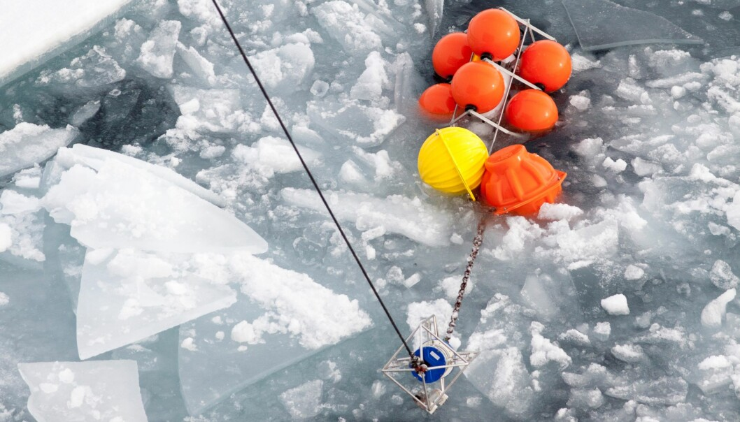 Her samler forskerne inn målinger av saltinnhold og temperatur fra Polhavet nord for øya Severnaja Semlja.  (Foto: Ilona Goszczko)