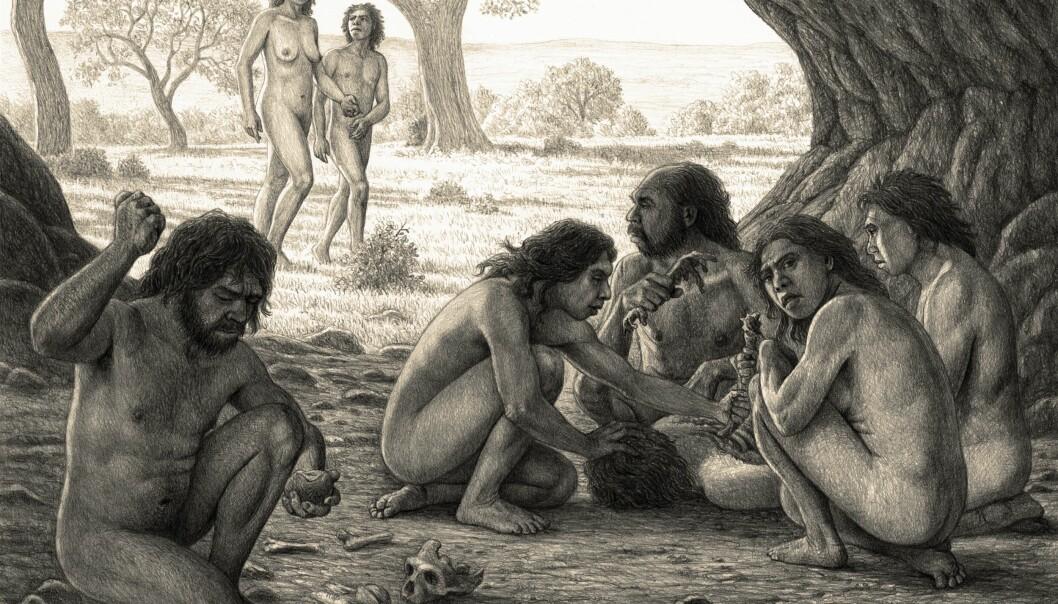 Tegningen er av en tidligere menneskeart som spiste hverandre for 800 000 år siden. De levde i Spania og forskerne har funnet tydelige tegn på knokler som viser at Homo antecessor lagde mat av hverandre. (Illustrasjon: Science Photo Library, NTB scanpix)