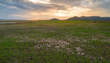 Klimaendringer snur opp ned på naturen