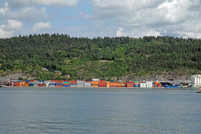 Utbygging, som her på Sjursøya, gjør at artenes leveområder blir stadig mindre og mer isolert fra hverandre. Det tåler spesialiserte arter dårlig. (Foto: Anders Endrestøl)