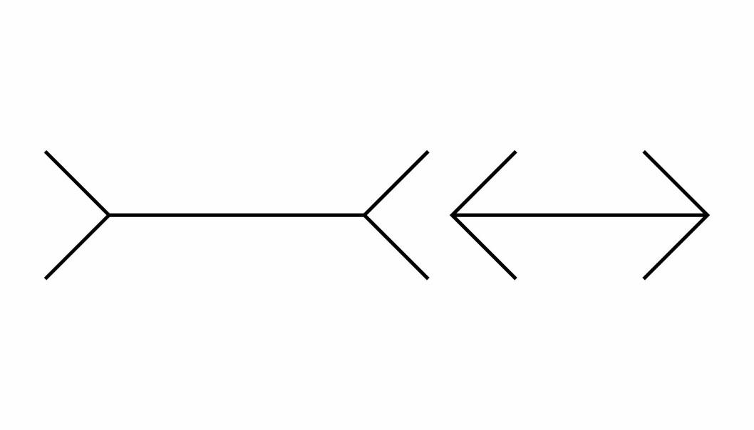 Ser du hvilken av disse to som er lengst? (Illustrasjon: Science Photo Library, NTB scanpix)