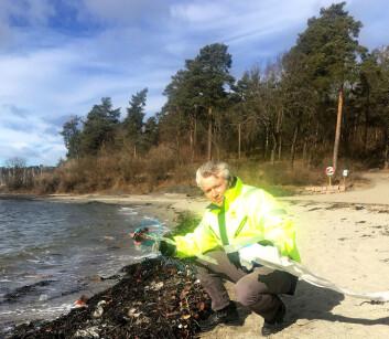 Hans Peter Arp er seniorspesialist i miljøteknologi ved NGI. (Foto: NGI)