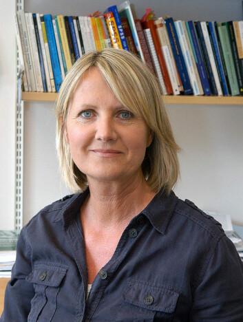 Kristin Haraldstad, førsteamanuensis ved Universitetet i Agder. (Foto: UiA)