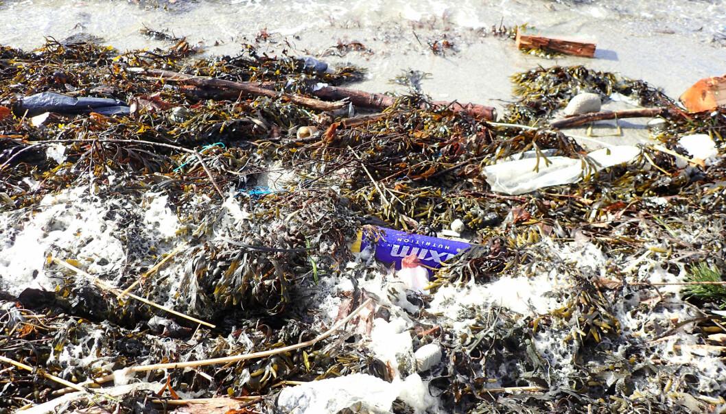 Mengder av plast ender opp i havet. Plasten brytes ned til stadig mindre biter, såkalt mikroplast. Forskere undersøker nå hvordan plasten sprer seg og påvirker havene våre.  (Foto: NGI)