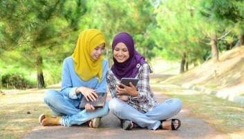 Margaretha van Es har forsket på hvordan muslimske kvinner i Nederland og Norge organiserer seg. (Illustrasjonsfoto: dboystudio / Shutterstock / NTB scanpix)