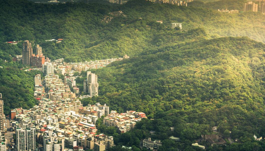 Naturen er dypt påvirket av menneskets fremferd. Vi rydder skog for å bygge og produsere, og det går ut over klimaet.  (Foto: khunballang / Shutterstock / NTB scanpix)