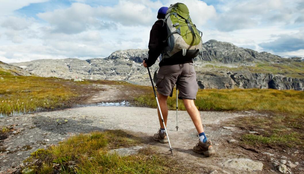 Vi er mer på tur i skog og fjell enn før, ifølge en ny rapport.  (Foto: Galyna Andrushko / Shutterstock / NTB scanpix)