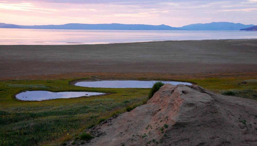 Et varmere Arktis kan forårsake økt metanutslipp fra mikroorganismene som lever i jorda.  (Illustrasjonsfoto: Colourbox)