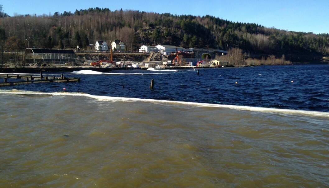 På grunn av utbyggingen av ny E18 forbi Larvik har det skjedd mye anleggsarbeid ved Farrisvannet. Det kan påvirke vannkvaliteten i strandsonen og i bekker som renner ut i vannet.  (Foto: Statens Vegvesen)