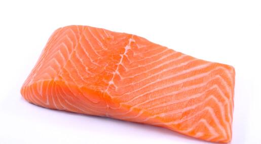 Podcast: Kva meinar norske forbrukarar om genmodifisert mat?