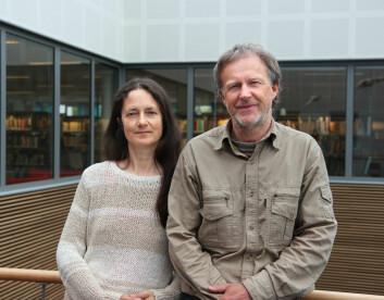 Siv Elin Eidissen og Jostein Lorås oppdaget soppen da de var ute på feltarbeid. (Foto: Hilde Veronika Falch)