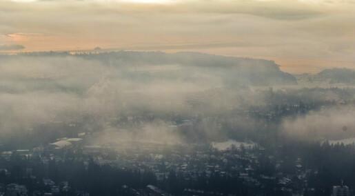 Nye vedovner sparer både miljøet og helsa vår