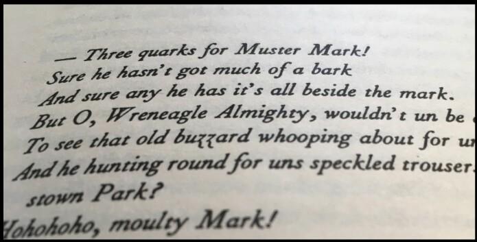Det berømte sitatet fra side 383 i <i>Finnegans Wake</i>. (Foto: Eivind Torgersen)