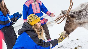 Forsker sammen med samiske entreprenører