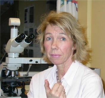 Inger Nina Farstad er overlege og professor i patologi. (Foto: Oslo Universitetssykehus)