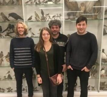 CEES-forskerne: Kjetil Lysne Voje (t.v.), Camilla Lo Cascio Sætre, Glenn-Peter Sætre og Fabrice Eroukhmanoff. (Foto: CEES)