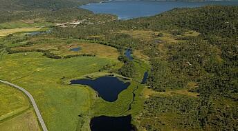 Slik vil forskere restaurere ødelagte vannmiljø