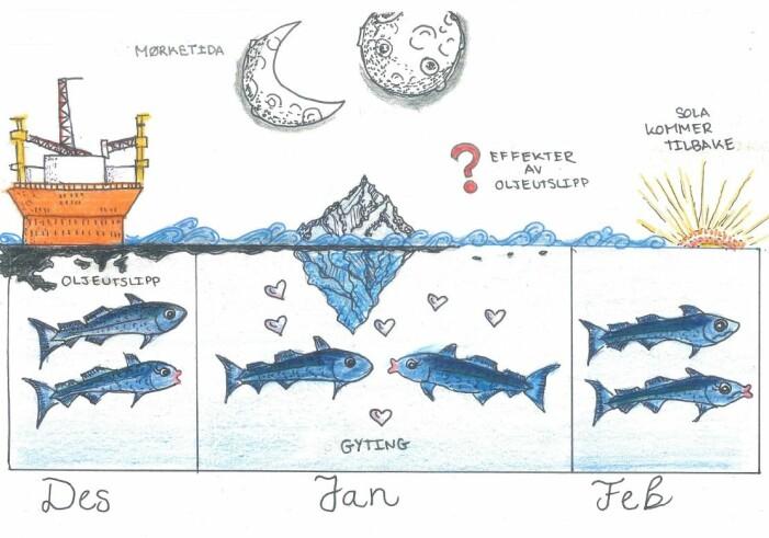Eksperimentet i Arven etter Nansen-prosjektet simulerer et oljeutslipp i Barentshavet i mørketida og forskere fra Universitetet i Tromsø og Bergen undersøker effekter av råoljeeksponering på polartorsk i gyteperioden (Illustrasjon: Leah Strople/ Universitet i Bergen)