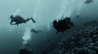 Debattinnlegg: Regelendringene for dykking er ikke besluttet – de vurderes