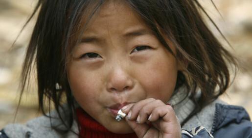 Nå kommer de asiatiske tobakkskjempene
