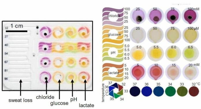 Fargeskalaen på svettesensoren som viser hva de enkelte fargene i svettekanalene betyr. (Foto: John Rogers Research Group)