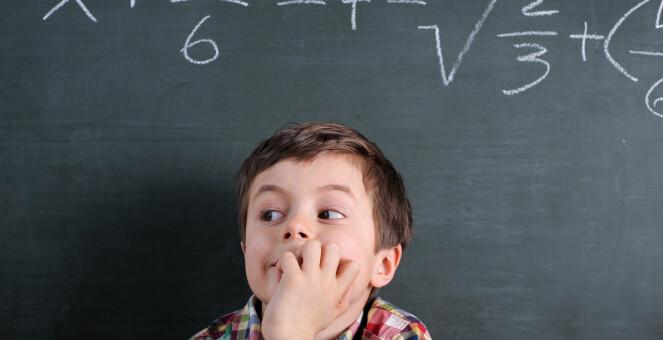 – Det er en myte at noen ikke har hjerne for matematikk