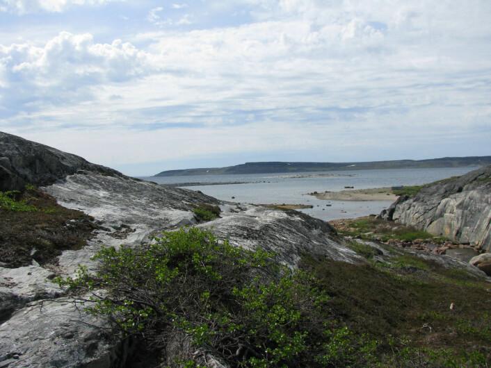 Det er kjent at fjellet i dette området er svært gammelt. Men nå mener altså de to forskerne at steinen er lagd av enda eldre jordskorpe fra planetens tidligste barndom. (Foto: Jonathan O'Neil])