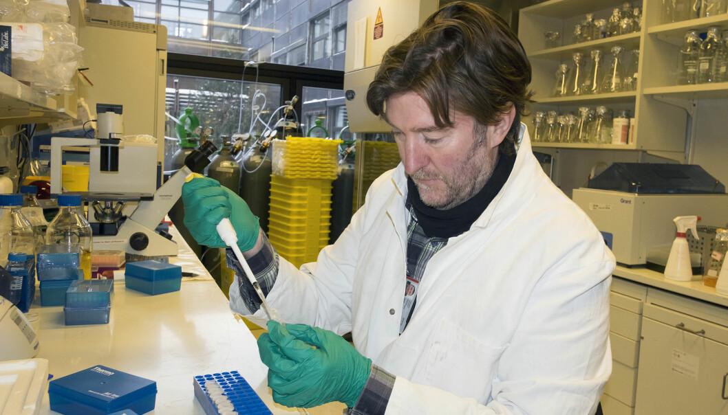 Gareth Sullivan forklarer hvordan forskerne på labben hans produserer lever og redder nesehorn fra å dø ut. Tildelingen fra USA er meget kjærkommen. (Foto: Gunnar Lothe, UiO)
