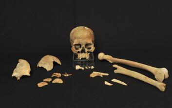 Dette fant forskerne i utgravningen i Vest Agder (Foto: Pål Nymoen)