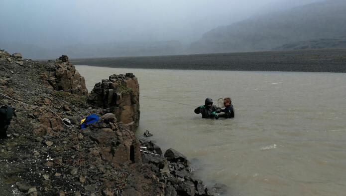 Lyttestasjonene i elvene var ikke alltid enkle å berge. Denne hadde blitt begravet i løpet av året som var gått siden den ble satt ut. (Foto: David Gallien)