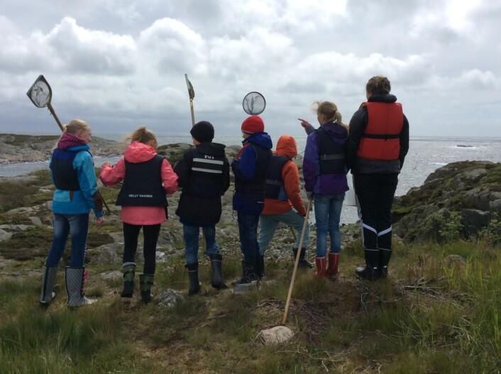 Skattejakt på Randøya: Det polsk-norske teamet ser etter planter og små sjødyr sammen med barn fra Kristiansand. (Foto: SIU)