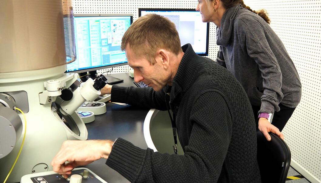 Søskenparet Per Erik Vullum og Fride Vullum-Bruer studerer bildene som supermikroskopet tar av batteri-materialene. (Foto: Per Henning/NTNU)