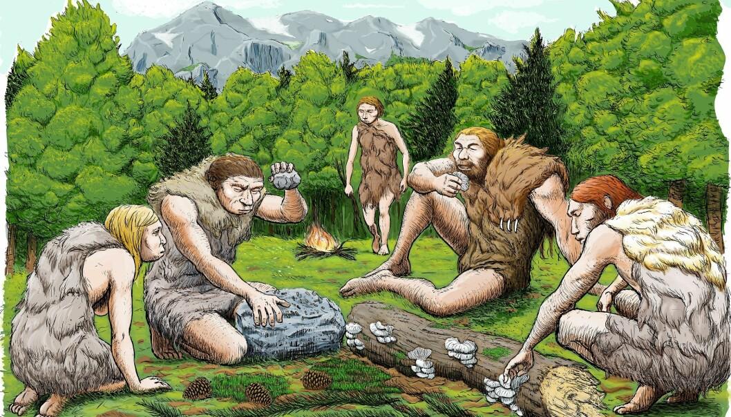 Slik ser en tegner for seg at neandertalerne fra El Sidrón koste seg med sopp, pinjekjerner og mose. (Illustrasjon: Abel Grau, CSIC Communication)
