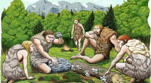 Tannstein forteller hva neandertalerne spiste