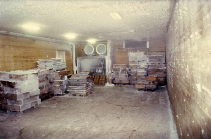 Bilde fra fryserommet til Norbest Canning sin fabrikk på Smøla. Fisken fra fryseskipene ble lagret i slike fryserom på fabrikkene. Frysingen av råstoffet gjorde at sardinproduksjonen kunne foregå hele året. Foto: MUST/ Norsk hermetikkmuseum