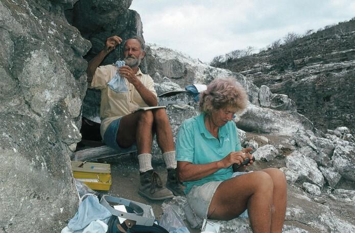Peter og Rosemary Grant i yngre dager med darwinfinker på Daphne Major. (Foto: Thalia Grant, publisert med tillatelse fra Peter og Rosemary Grant)