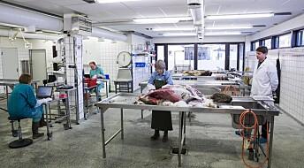 Veterinærinstituttet nedbemanner i flere byer