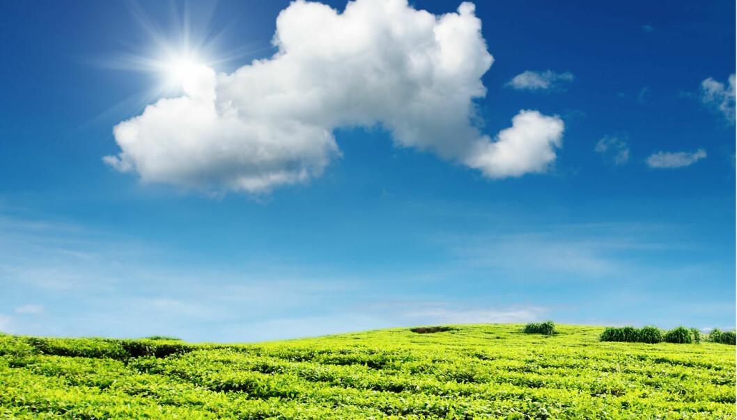 I fremtiden trenger ikke bønder i alle land kjøpe kunstgjødsel fra Norge, tror professor Truls Norby. Det eneste som trengs i denne produksjonen, er nemlig energi, luft og vann – og det har bonden allerede. (Foto: Shutterstock / NTB scanpix)